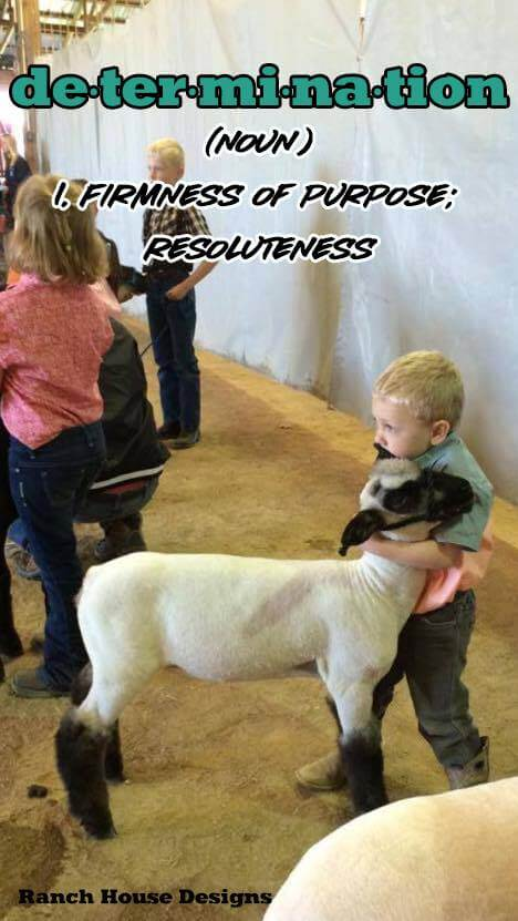 Determination - Ranch House Designs Livestock Motivation