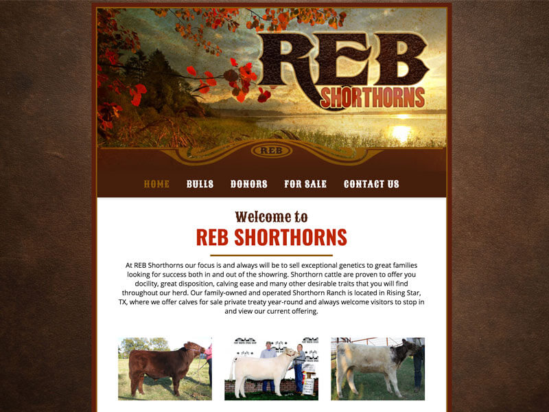 Shorthorn Web Design - Ranch House Designs - REB Shorthorns