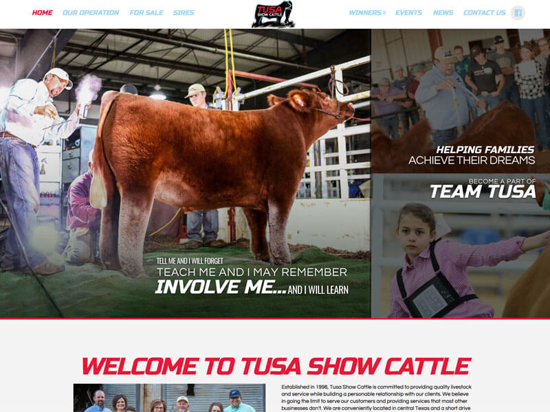 Show Cattle Web Design - Ranch House Designs - Tusa Show Cattle