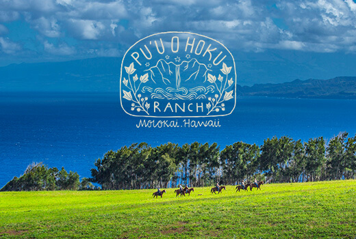 Pu'u_Hoku_Website_Mock_Up