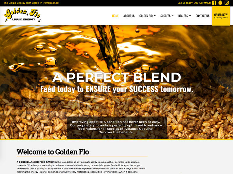 Golden Flo Liquid Energy Web Design - Ranch House Designs
