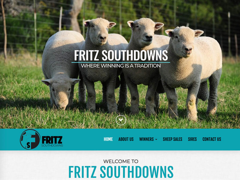 Southdowns Web Design - Ranch House Designs - Fritz Southdowns