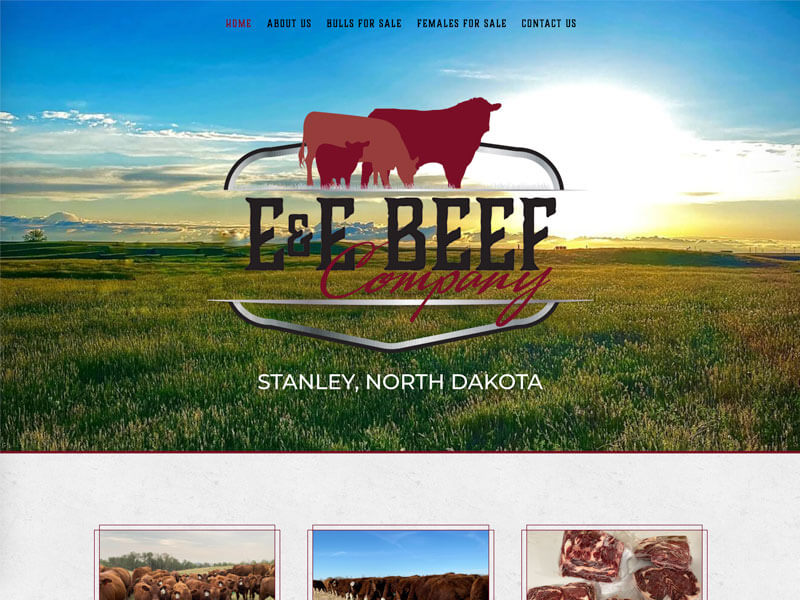 E & E Beef Company Web Design - Ranch House Designs, Inc.